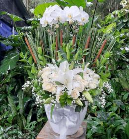 anggrek bulan 2 tangkai mix mawar